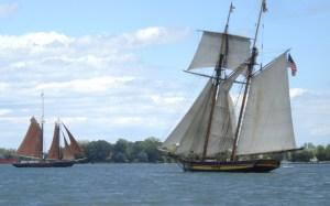 Tall ships 8