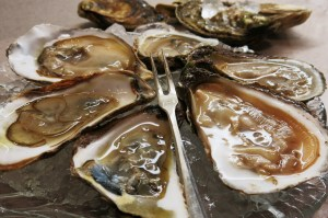 Oyster 7