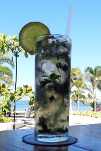 Mojito - escape from the winter in Puerto Vallarta