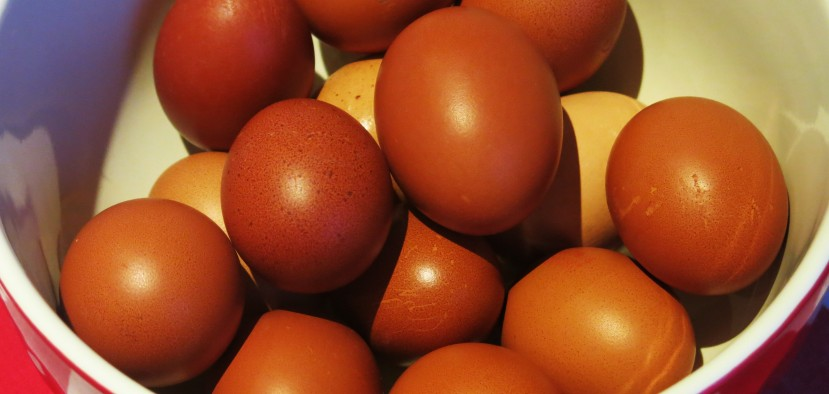 Featured image - ultra brown fee range eggs ready for cooking in my new kitchen