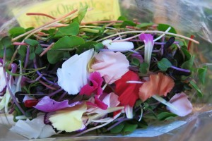 Petals and sprouts from Kind Organics