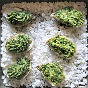 OYSTERS B