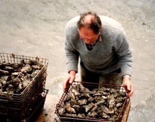 Oysters Arcachon20190809_18250924 (2)